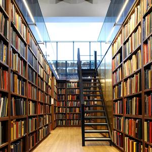 Библиотеки Балыксы