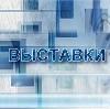Выставки в Балыксе